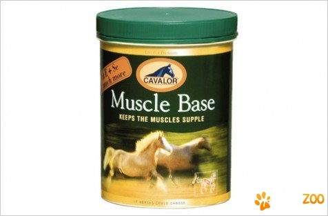 Cavalor Muscle Base pt cai